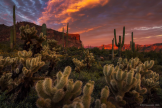 Peter James Nature Photography   Superstition Wilderness