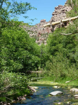 Ray Minnick   Parsons Creek