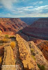 Reid Helms   Marble Canyon