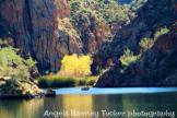 Angela Ramsey Tucker   Saguaro Lake