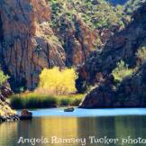 Angela Ramsey Tucker | Saguaro Lake