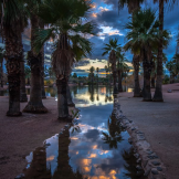Bob Miller | Phoenix