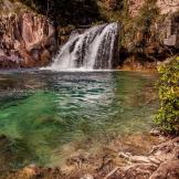 Chirag A. Patel | Fossil Creek