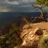 Diane Ingram | Grand Canyon