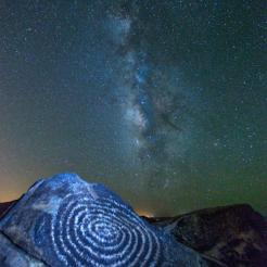 Don Lawrence | Saguaro National Park West