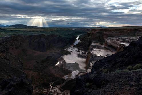 Greg McKelvey | Grand Falls