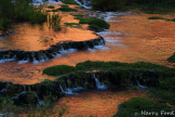 Harry Ford | Supai