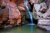 Judy Graham | Grand Canyon