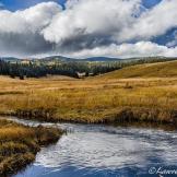 Lawrence Busch | Big Lake