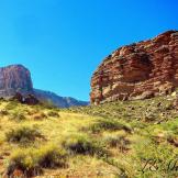 Lynne Morck | Grand Canyon