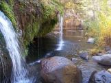 Mark Zillman   West Clear Creek Wilderness