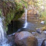 Mark Zillman | West Clear Creek Wilderness