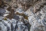 Patrick Cobb | Tanque Verde Creek