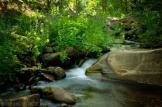 Saija Lehtonen | Horton Creek