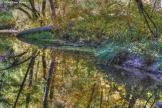 Tam Ryan   Oak Creek